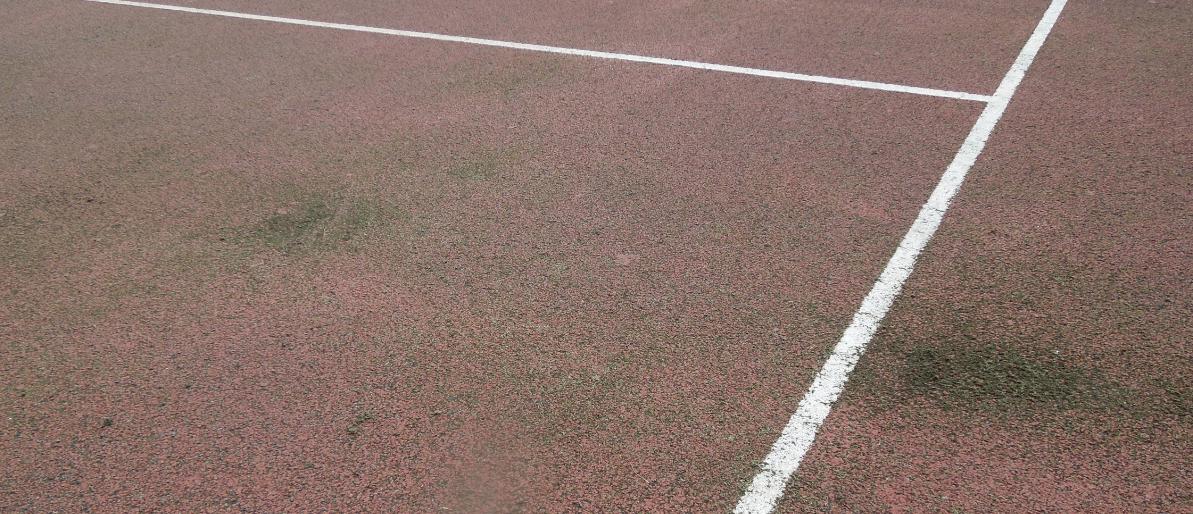 Algae on the tennis courts